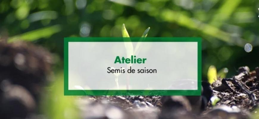 Atelier : Semis de saison Atelier/Stage