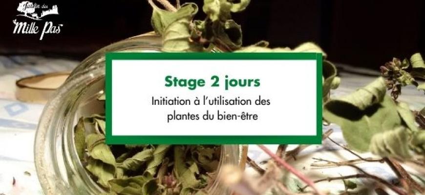 Stage 2 jours : Initiation à l'utilisation des plantes du bien-être Atelier/Stage