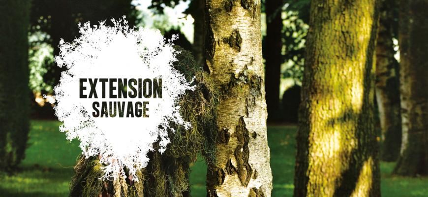 Festival Extension sauvage 2019 Danse