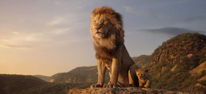 Le Roi Lion Famille
