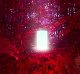 Image Solastalgia Numérique/multimedia