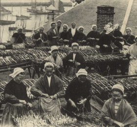 Mardi de l'égalité - Des sardines et des femmes