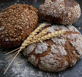 Image Visite du Gaec Diotel, paysan boulanger Visites et sorties