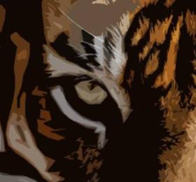 Image  Before Tigre'delik #4 (2 salles) Clubbing/Soirée