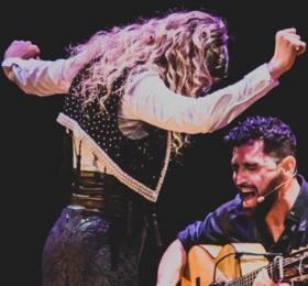 Flamenco sin Sulfitos