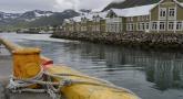 Cinédoc - Islande au gré des vents