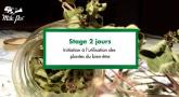 Stage 2 jours : Initiation à l'utilisation des plantes du bien-être